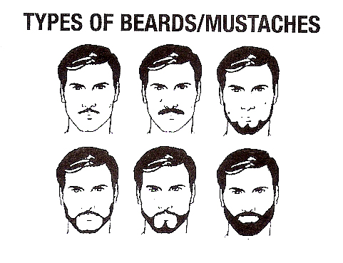 different types french beard - photo #31